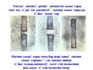 Токтың магнит өрісінің магниттік сызықтары сияқты , тұрақты магниттің магнит