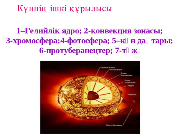 1–Гелийлік ядро; 2-конвекция зонасы; 3-хромосфера;4-фотосфера; 5–күн дақтары;...