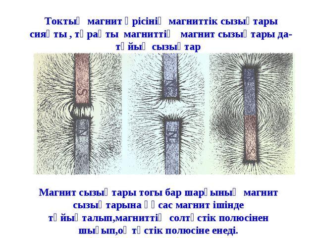 Токтың магнит өрісінің магниттік сызықтары сияқты , тұрақты магниттің магнит...