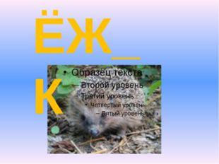 ЁЖ_К И