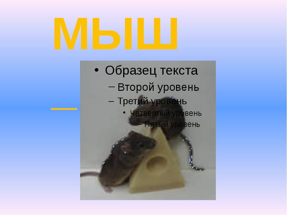 МЫШ_ и