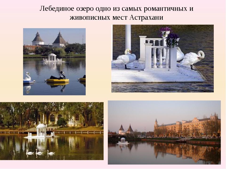 Лебединое озеро одно из самых романтичных и живописных мест Астрахани