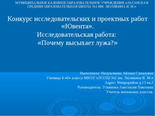 МУНИЦИПАЛЬНОЕ КАЗЕННОЕ ОБРАЗОВАТЕЛЬНОЕ УЧРЕЖДЕНИЕ «ЛАГАНСКАЯ СРЕДНЯЯ ОБРАЗОВА