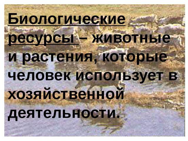 Биологические ресурсы – животные и растения, которые человек использует в хоз...