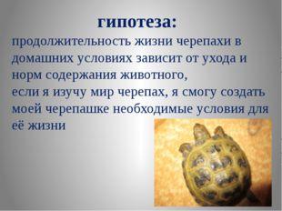 гипотеза:  продолжительность жизни черепахи в домашних условиях зависит от у