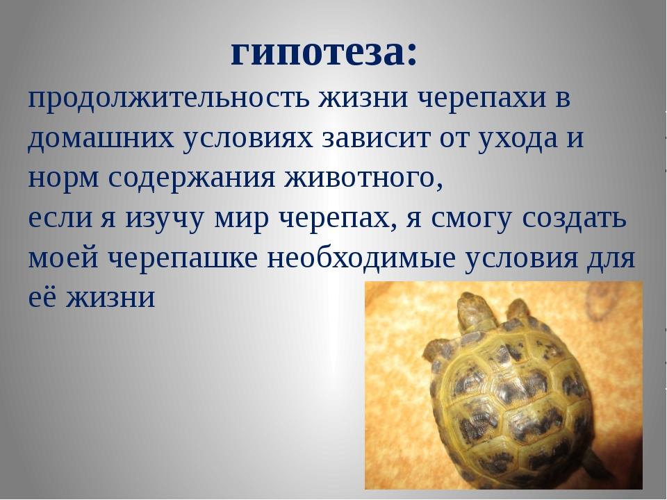 гипотеза:  продолжительность жизни черепахи в домашних условиях зависит от у...
