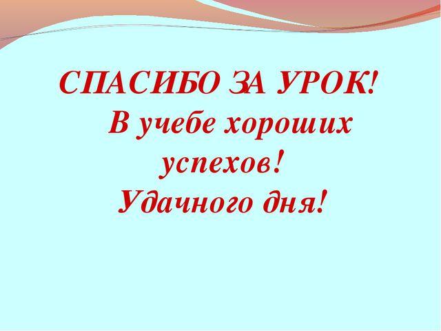 СПАСИБО ЗА УРОК! В учебе хороших успехов! Удачного дня!