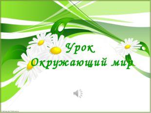 Урок Окружающий мир FokinaLida.75@mail.ru