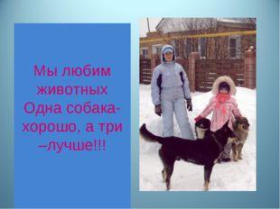 Мы любим животных Одна собака- хорошо, а три –лучше!!!