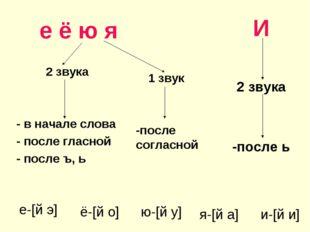 е ё ю я 2 звука - в начале слова - после гласной - после ъ, ь И 2 звука -пос
