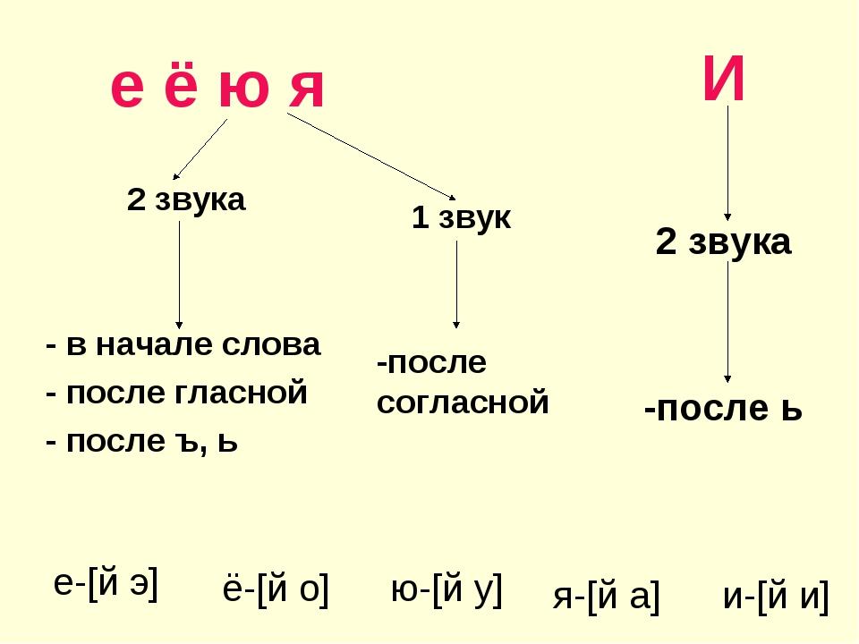 е ё ю я 2 звука - в начале слова - после гласной - после ъ, ь И 2 звука -пос...