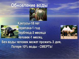 Обновление воды Кактусы-18 лет Черепаха-1 год Верблюд-3 месяца Человек-1 мес