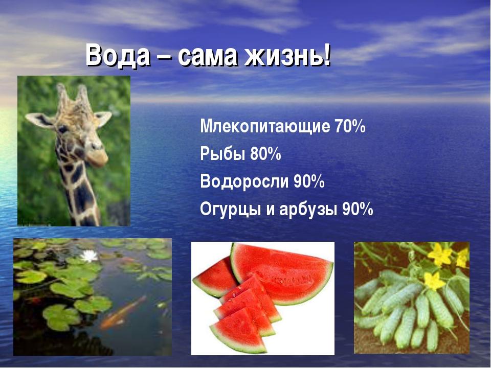 Вода – сама жизнь! Млекопитающие 70% Рыбы 80% Водоросли 90% Огурцы и арбузы...
