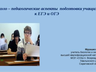 Психоло – педагогические аспекты подготовки учащихся к ЕГЭ и ОГЭ Мурашкова Г.