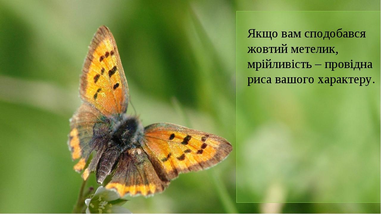 Якщо вам сподобався жовтий метелик, мрійливість – провідна риса вашого характ...