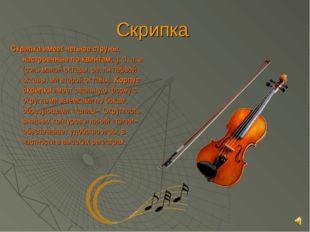 Скрипка Скрипка имеет четыре струны, настроенные по квинтам:g, d, a, e (соль
