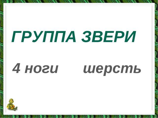 ГРУППА ЗВЕРИ 4 ногишерсть