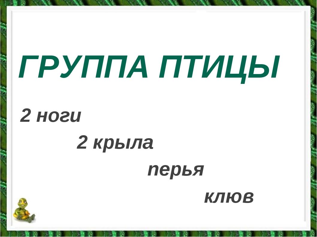 ГРУППА ПТИЦЫ 2 ноги 2 крыла перья клюв