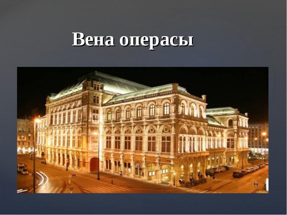 Вена операсы