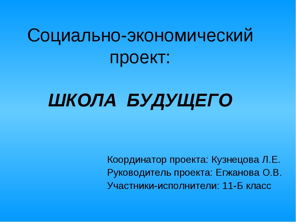 Социально-экономический проект: ШКОЛА БУДУЩЕГО Координатор проекта: Кузнецова...