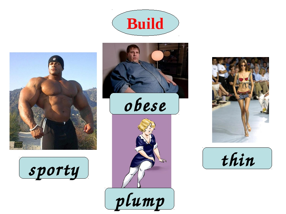 Build plump obese thin sporty