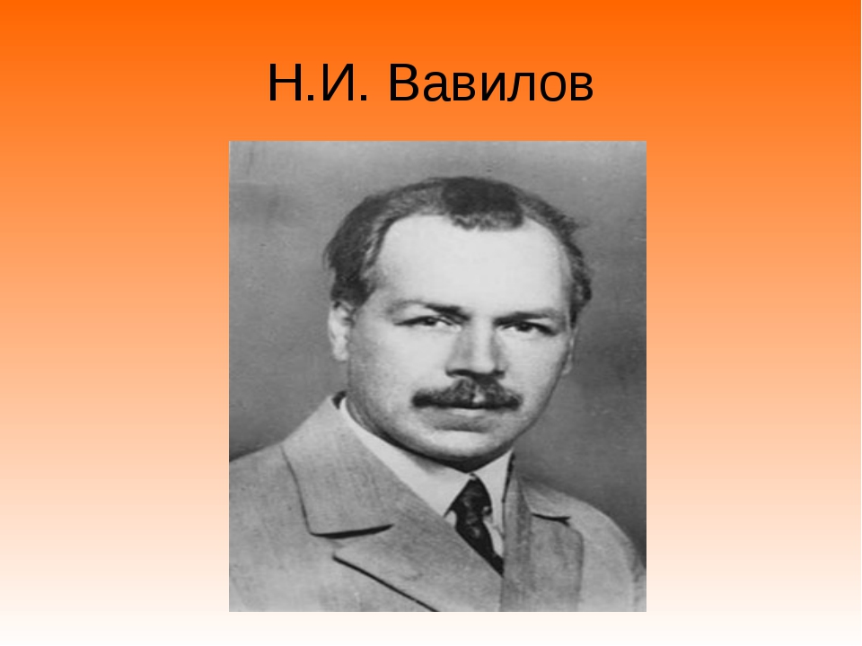 Н.И. Вавилов