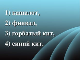 1) кашалот, 2) финвал, 3) горбатый кит, 4) синий кит.