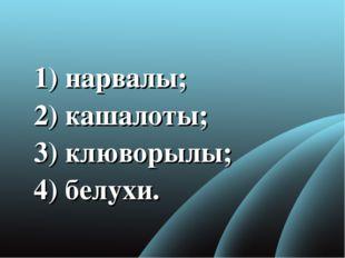 1) нарвалы; 2)кашалоты; 3) клюворылы; 4) белухи.