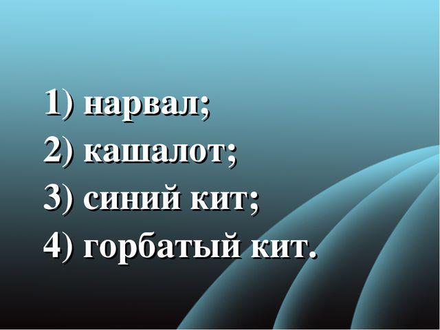 1) нарвал; 2) кашалот; 3)синий кит; 4) горбатый кит.