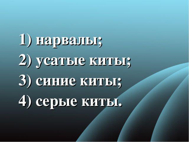 1) нарвалы; 2) усатые киты; 3) синие киты; 4)серые киты.