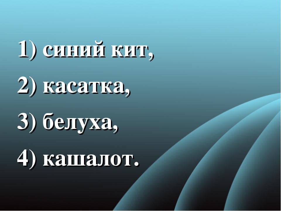1) синий кит, 2) касатка, 3) белуха, 4) кашалот.