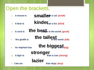Open the brackets. A mouse is than a cat. (small) A bear is than a fox. (kind
