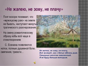 «Не жалею, не зову, не плачу» Поэт вскоре понимает, что «мужицкому раю» на зе