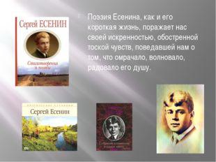 Поэзия Есенина, как и его короткая жизнь, поражает нас своей искренностью, об