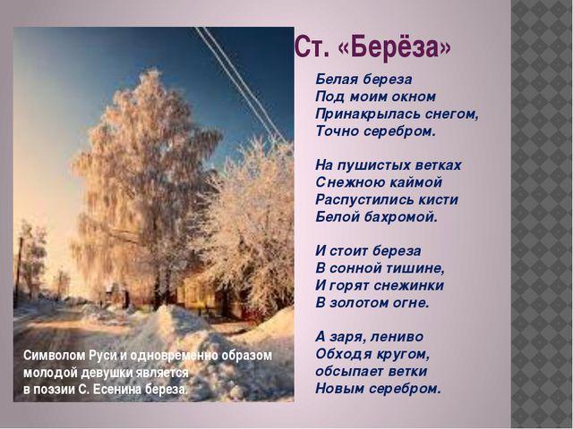 Ст. «Берёза» Белая береза Под моим окном Принакрылась снегом, Точно серебром....