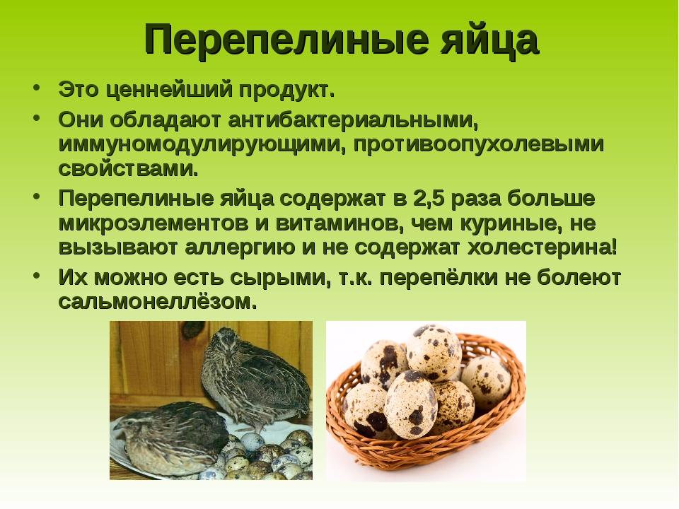 Перепелиные яйца Это ценнейший продукт. Они обладают антибактериальными, имму...