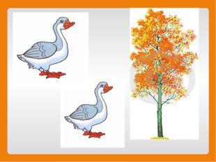 Эти птицы у канавки Часто моют свои лапки, Убегают от Бабуси. Кто скажите это