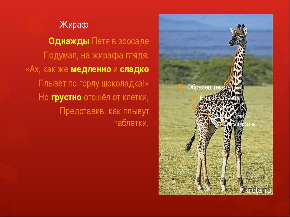 Жираф Однажды Петя в зоосаде Подумал, на жирафа глядя: «Ах, как же медленно и...