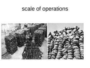 scale of operations