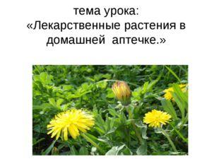 тема урока: «Лекарственные растения в домашней аптечке.» тема урока: «Лекарс