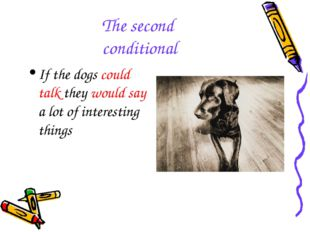 The second conditional If the dogs could talk they would say a lot of interes