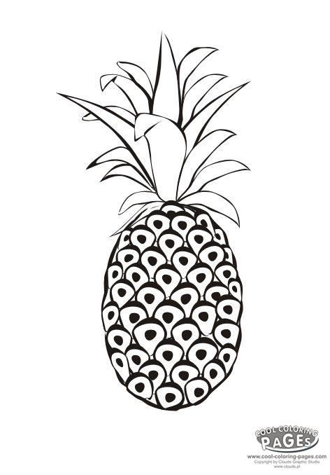 http://1.bp.blogspot.com/_D3g2gRPWRLU/TKStnsI3iSI/AAAAAAAABpU/wW83jn1ACo4/s1600/pineapple.jpg