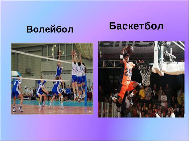 Волейбол Баскетбол