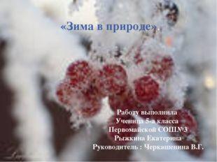 «Зима в природе». Работу выполнила Ученица 5-а класса Первомайской СОШ№3 Рыжк