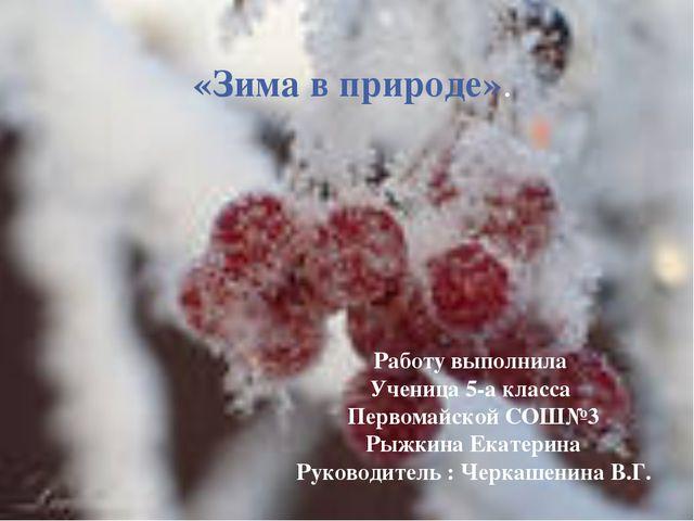 «Зима в природе». Работу выполнила Ученица 5-а класса Первомайской СОШ№3 Рыжк...