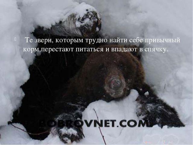 Те звери, которым трудно найти себе привычный корм,перестают питаться и впад...