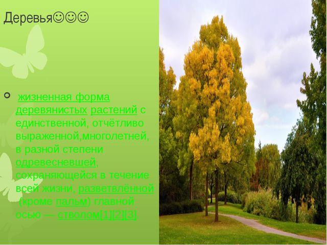 Деревья жизненная формадеревянистыхрастенийс единственной, отчётливо в...