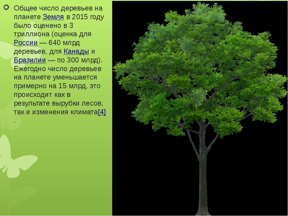 Общее число деревьев на планетеЗемляв 2015 году было оценено в 3 триллиона...