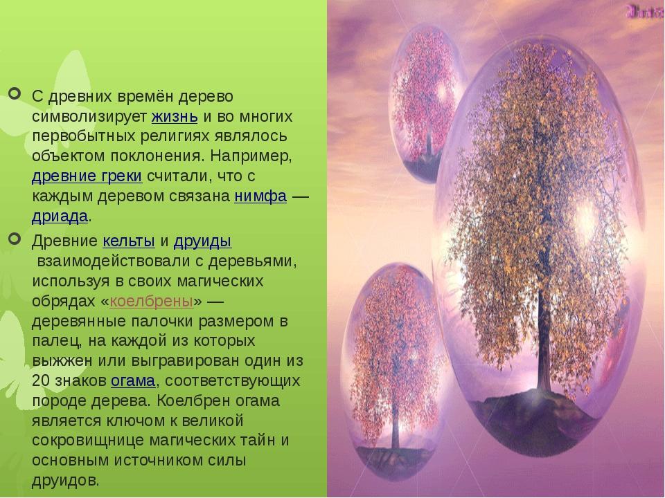 С древних времён дерево символизируетжизньи во многих первобытных религиях...