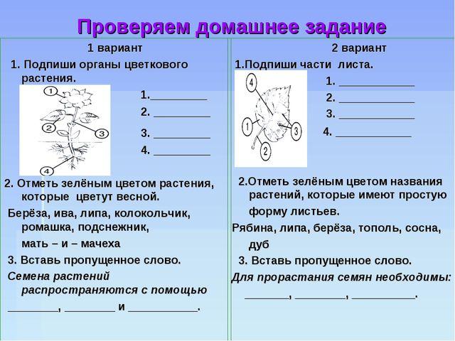 Проверяем домашнее задание 1 вариант 1. Подпиши органы цветкового растения....